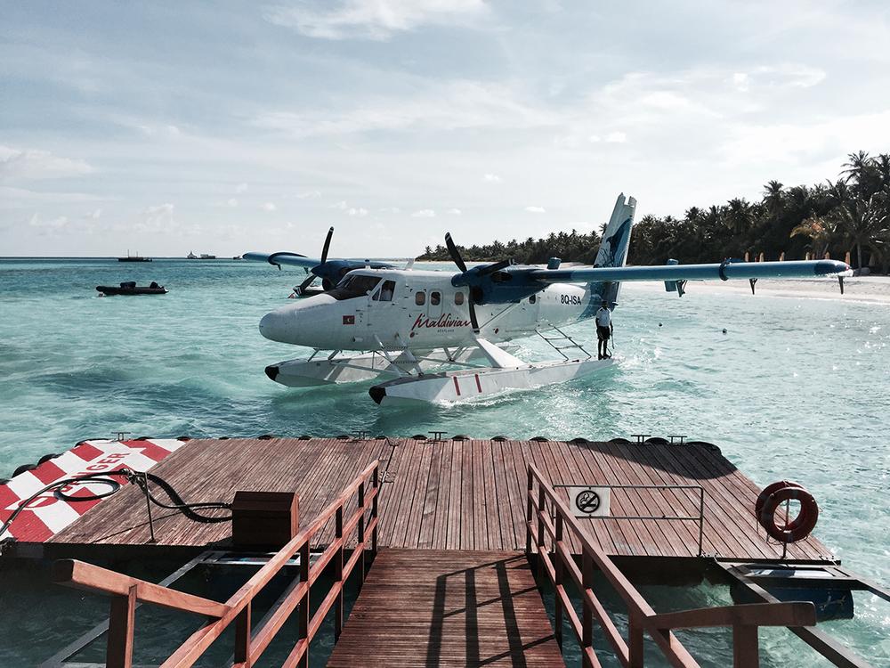 Maledives_topolindra_1.png