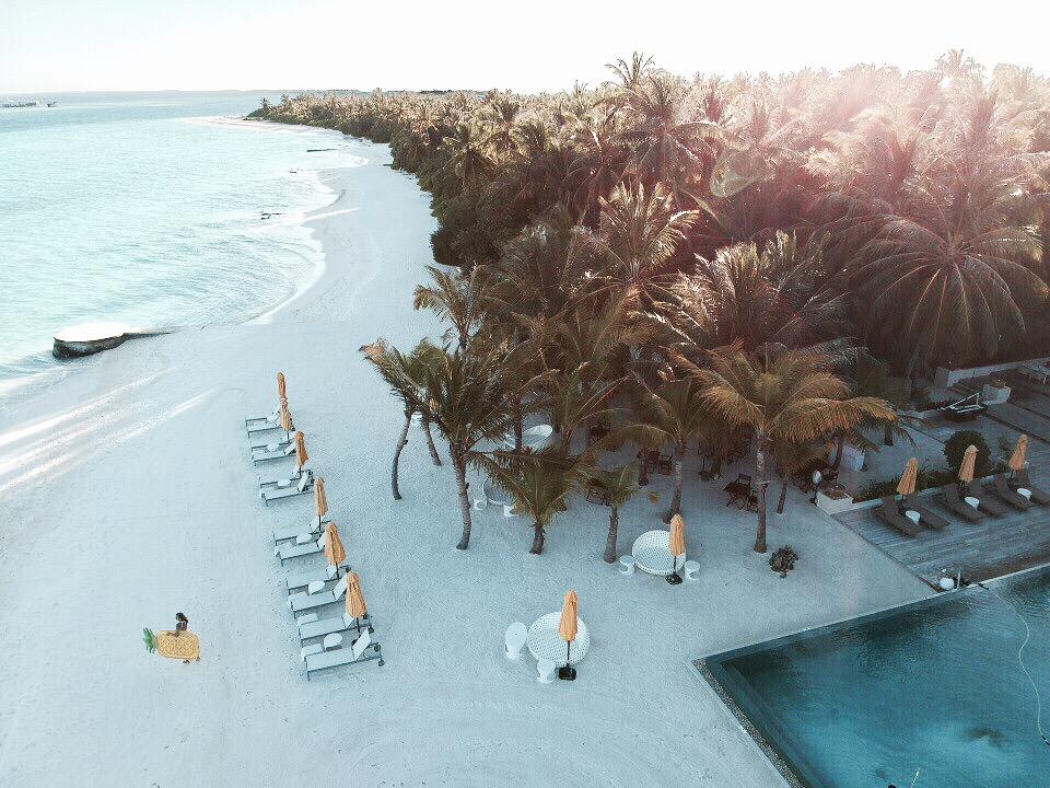 Maledives_topolindra_3.png
