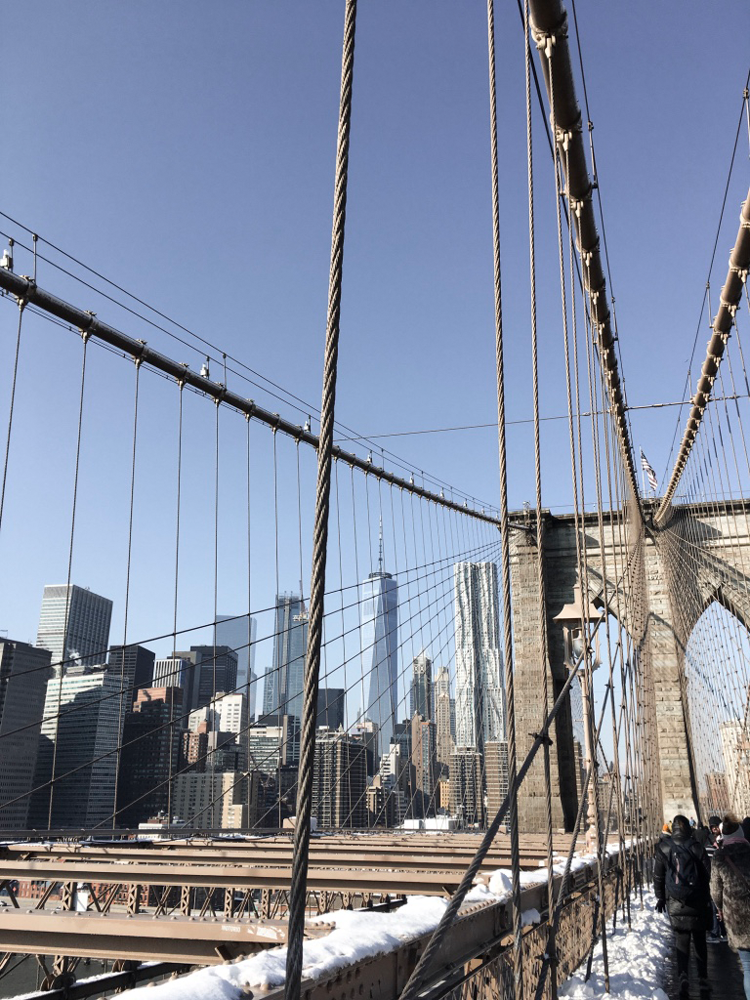Majavia_New-York_3.png