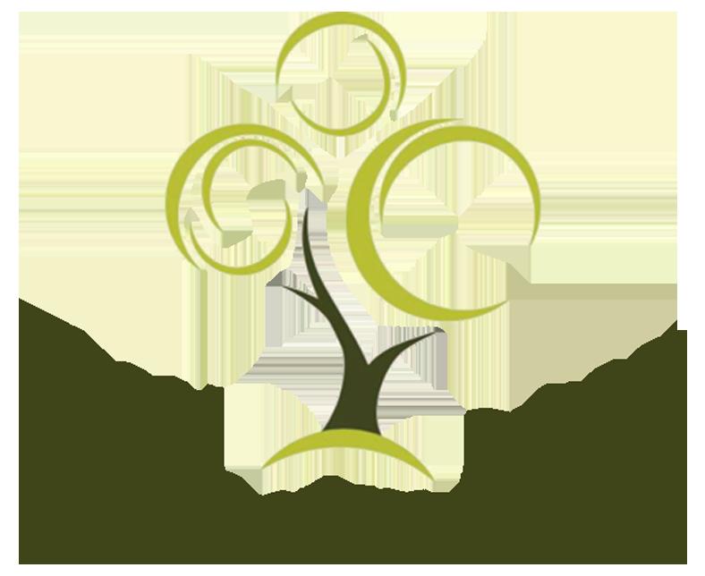 17-kindezi-trans.png