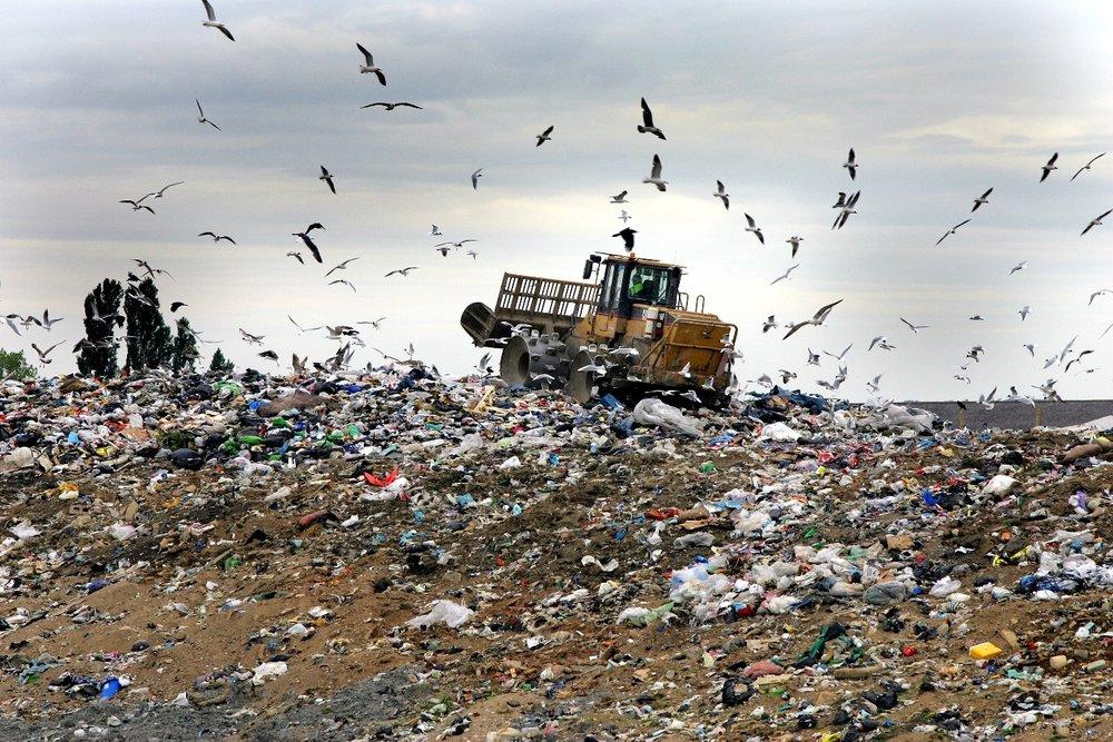 Rid The Ocean of Plastic -