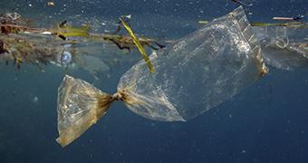 plastic-bag-data.jpg