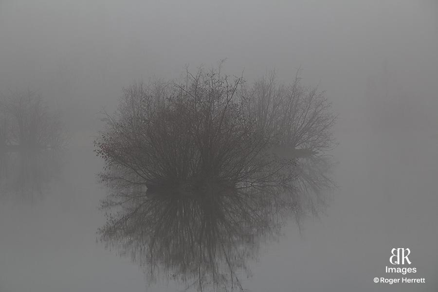 MG_0259.jpg