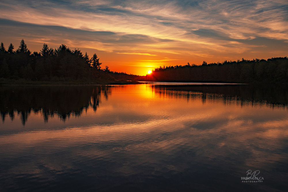 sunrise-nature-moncton-new-brunswick-BRimages.ca