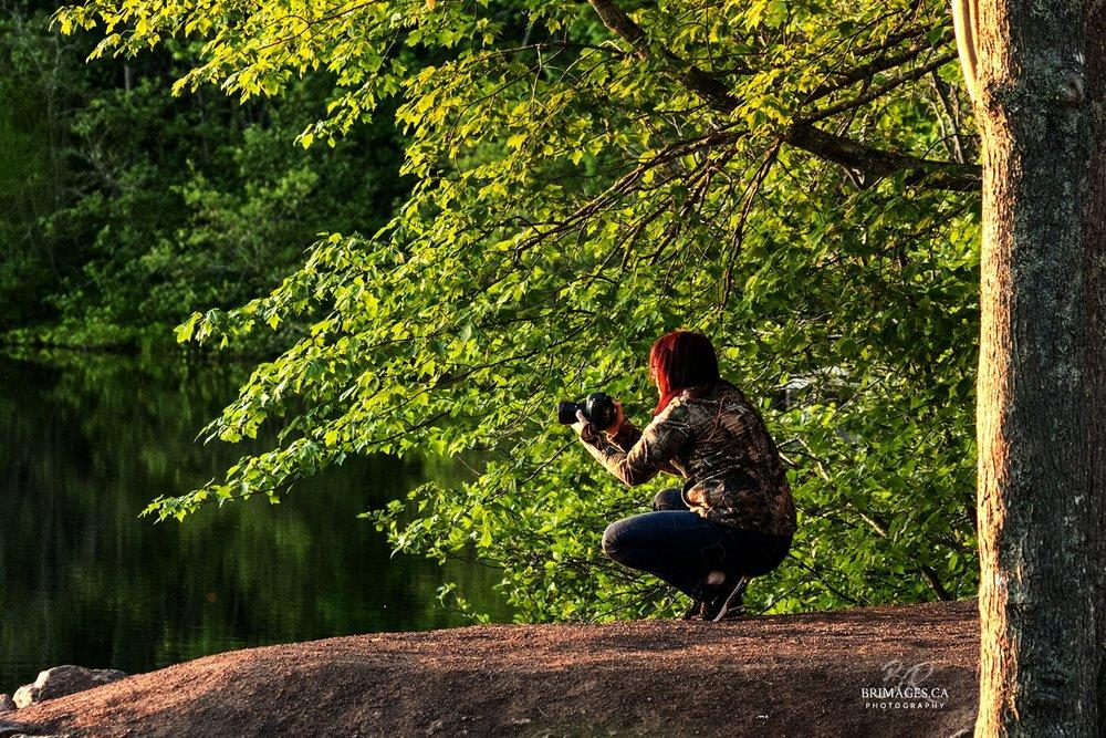 sunrise-nature-Beverley-Lu-Steeves-BRimages.ca