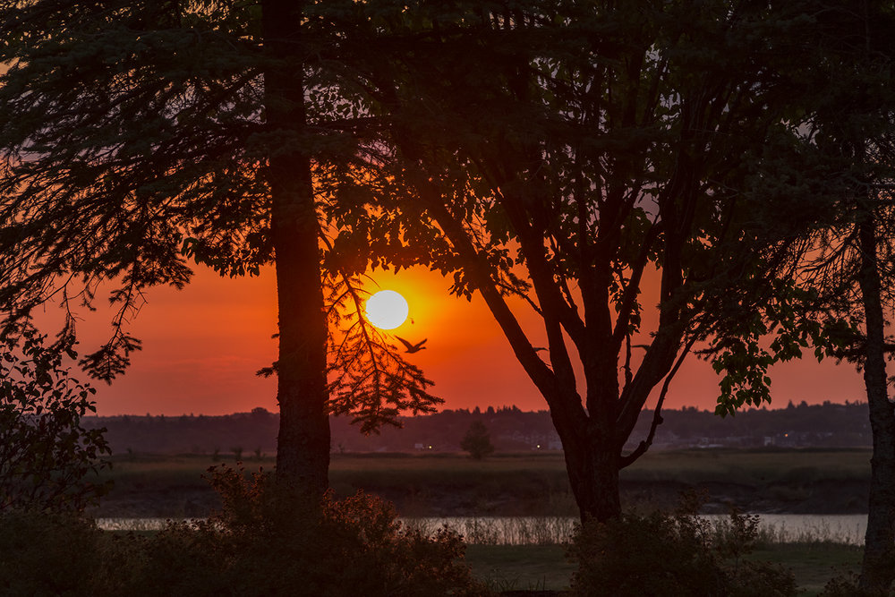 Moncton Sunrise - Canon 7D mk II, Canon 18-135 @ 106mm, 1/320 sec, f/8 and ISO 400