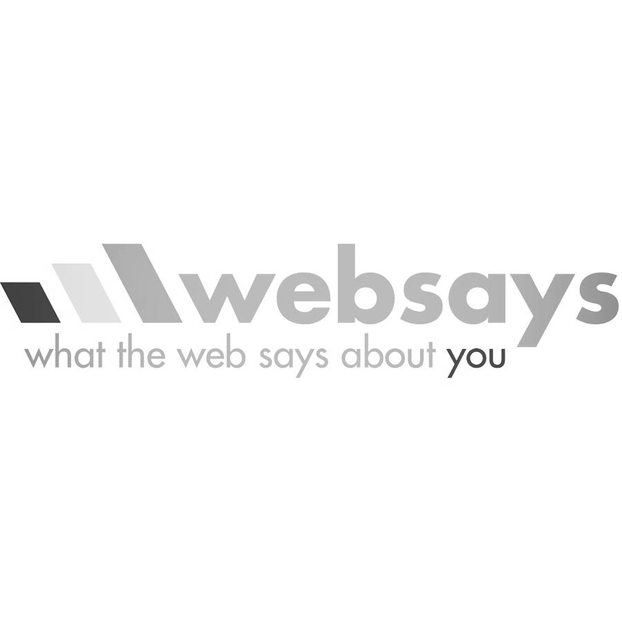 websays logo.jpg