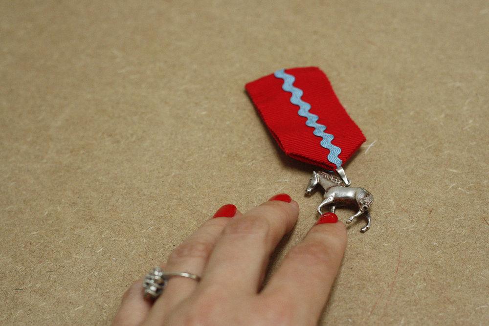 Homedade medal just becouse I deseverd it -