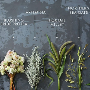Blossomed Flower Ingredients