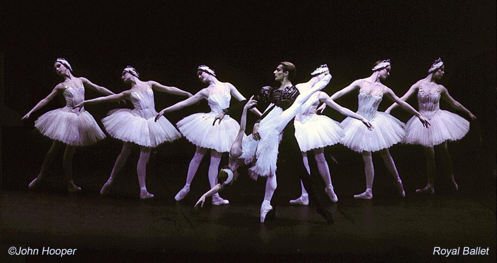 ballet_swan.png