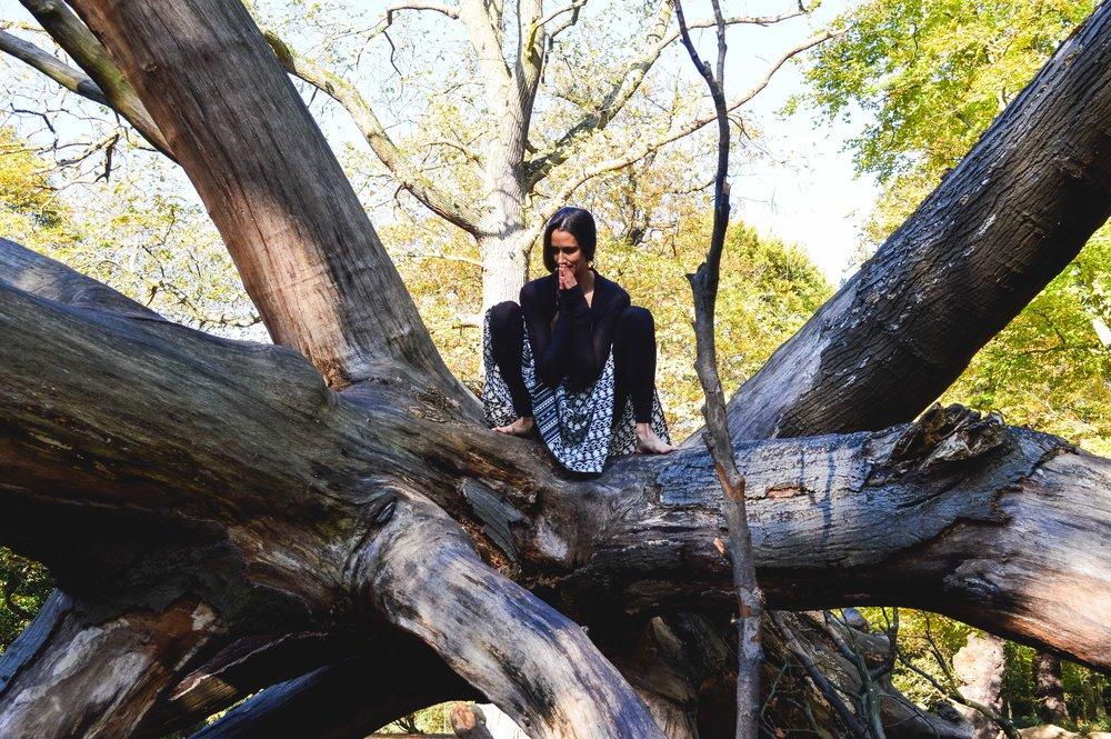 treecrouch.jpg