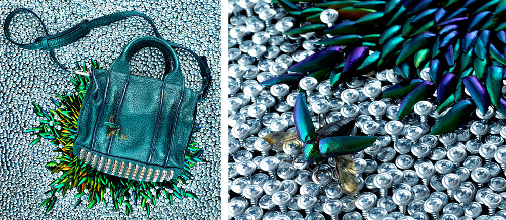 "CELINE GRISCOM   ""I saw the nuanced and rich teal color mimicked in the wings of these beetles, and was also inspired by the excesses of the bag's hardware. So I got down to screwing in thousands of screws and meticulously placing hundreds of beetle wings, because OCD art has always fascinated me as a way to express oneself. Shot by the amazing  Nathan Kraxberger  in his Soho studio."""