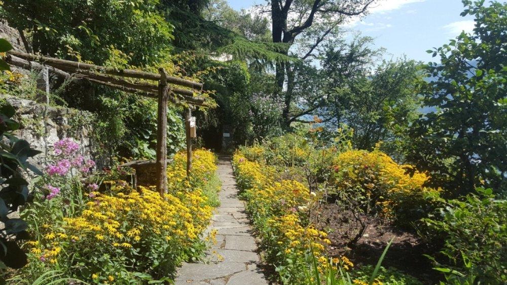 Casa Gabriella Path with Yellow Flowers 2.jpg