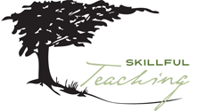 Logo for Skillful Teaching