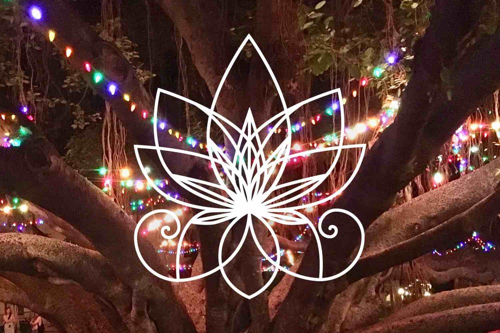 Lahaina Banyan Tree with Christmas Lights, Marijuasana Logo