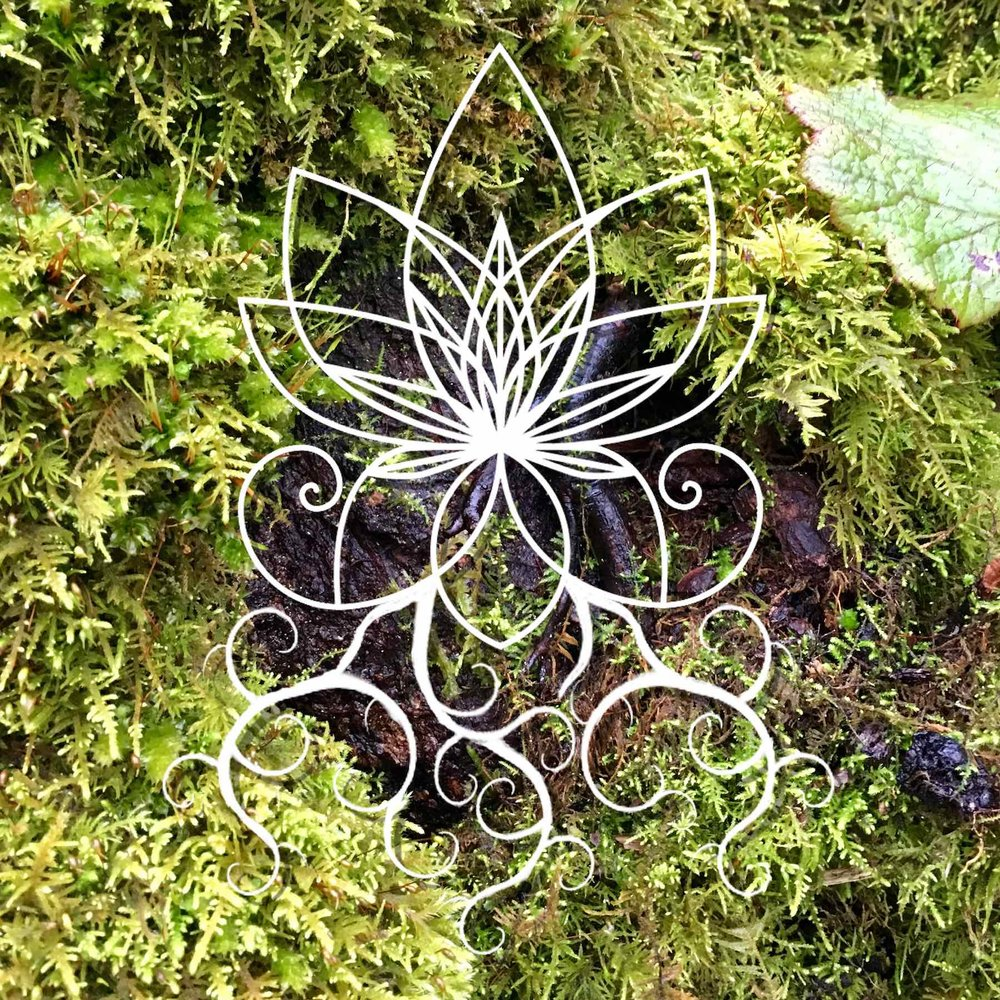 Marijuasana logo with roots, over moss in Washington State.