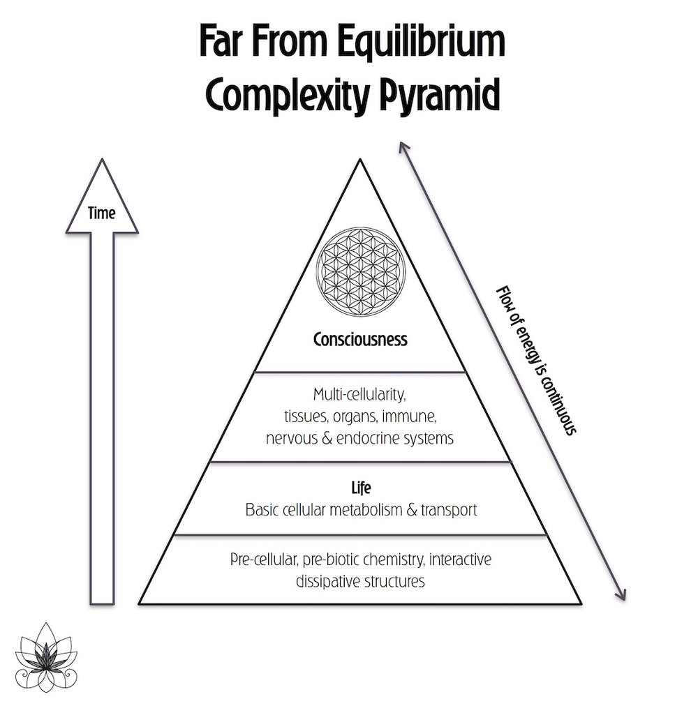Complexity Pyramid of Far From Equilibrium -source credit: Dr. Bob Melamede