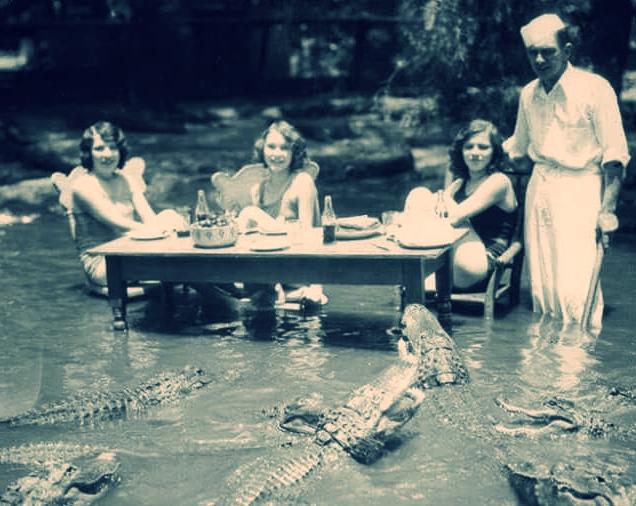Gator_Supper.jpg