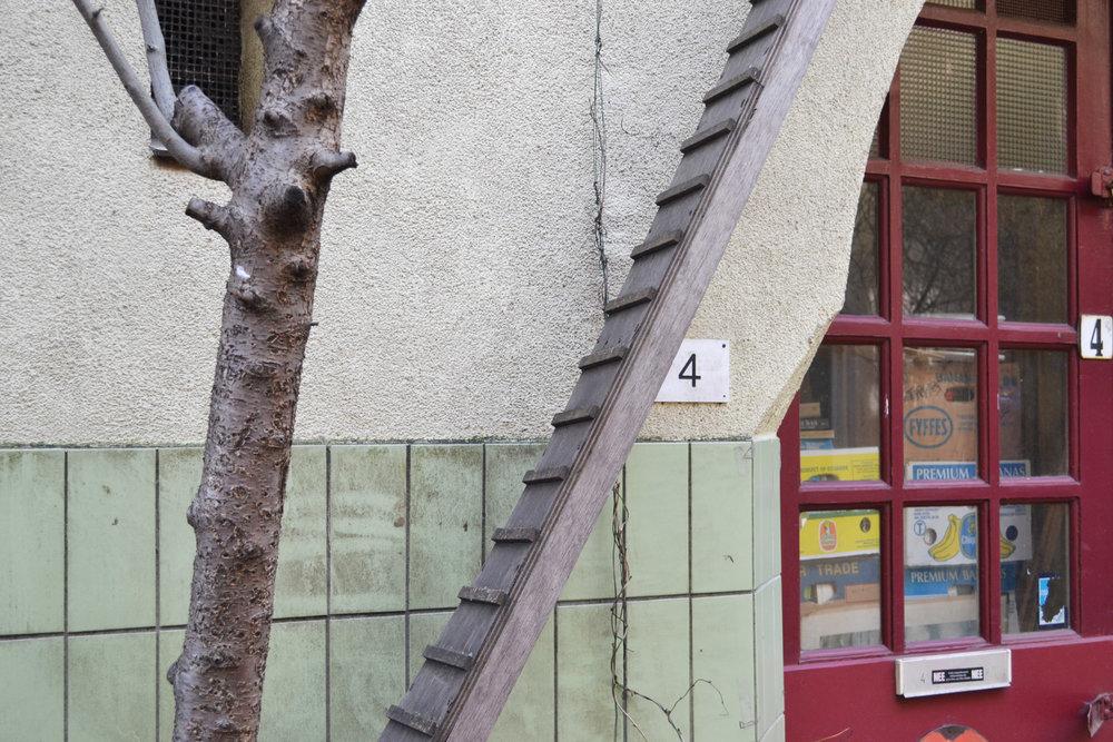 urbanbacklog-amsterdam-cat-ladder-2.jpg
