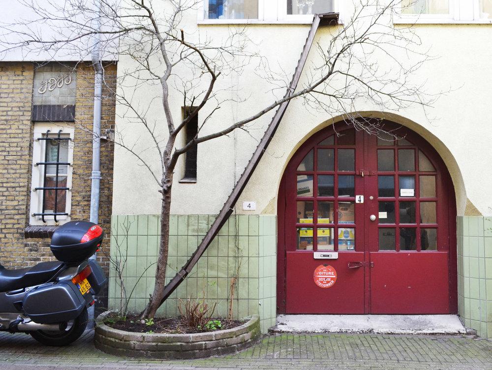 urbanbacklog-amsterdam-cat-ladder-1.jpg
