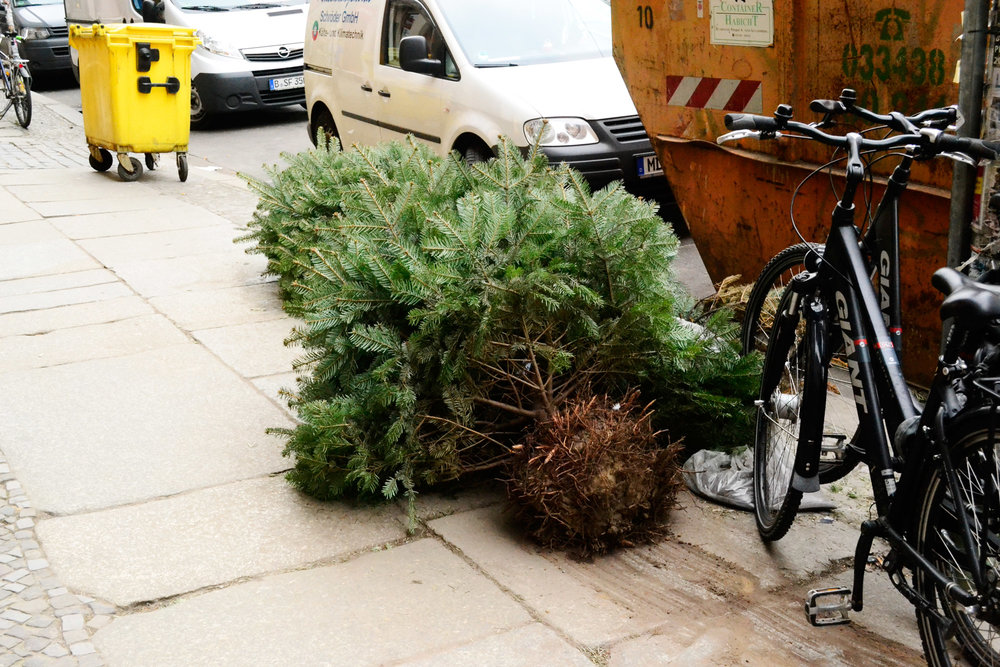 urbanbacklog-berlin-christmas-tree-4.jpg