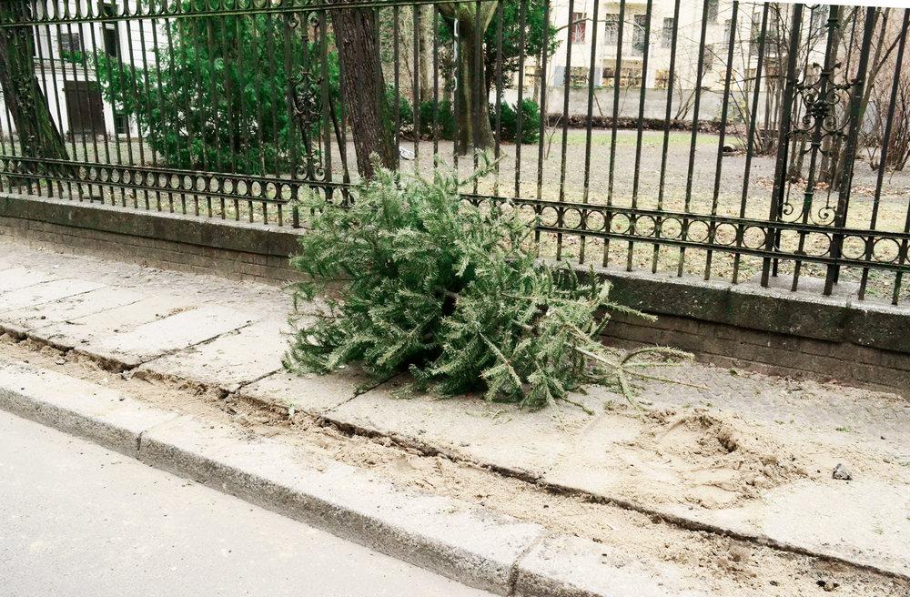 urbanbacklog-berlin-christmas-tree-6.jpg
