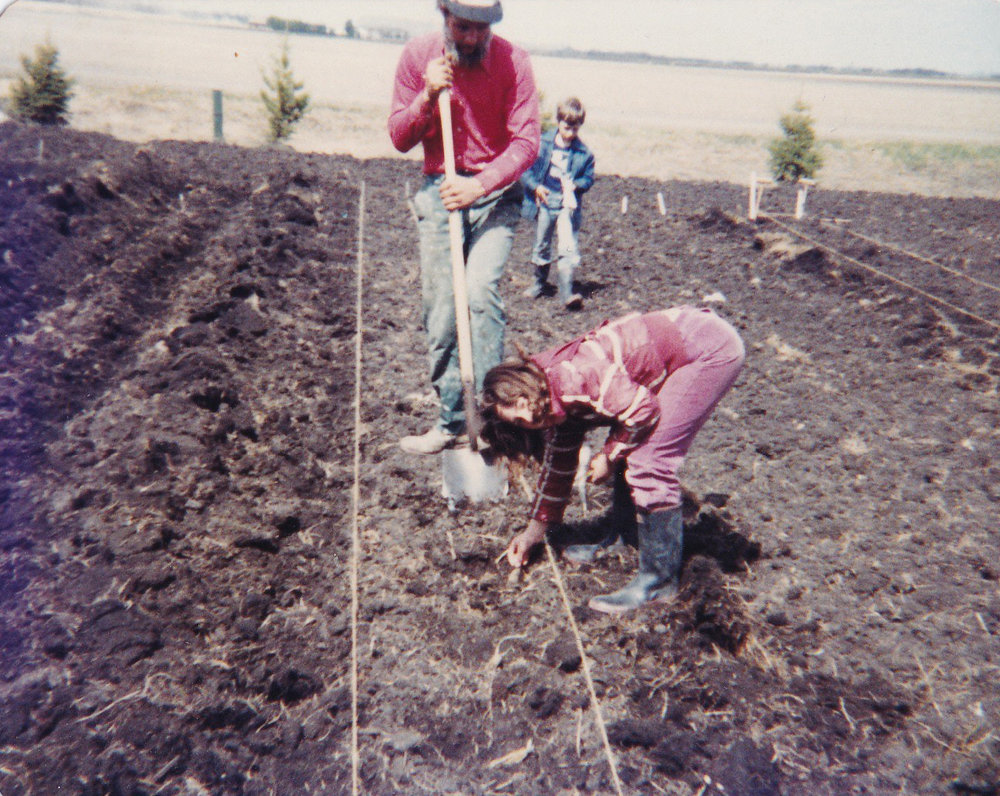 Early days on Vriend Organic farm(a young James is in the background).