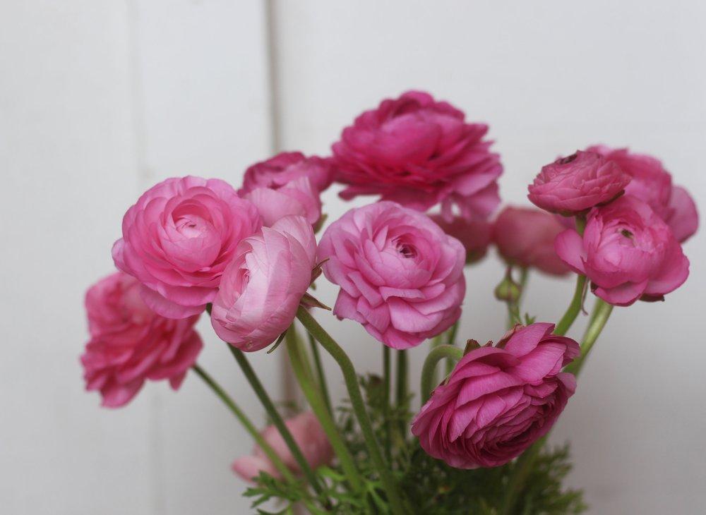 Floral Art -