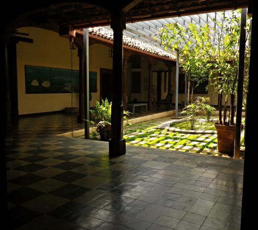 atrium-garden-with-contemporar.jpg