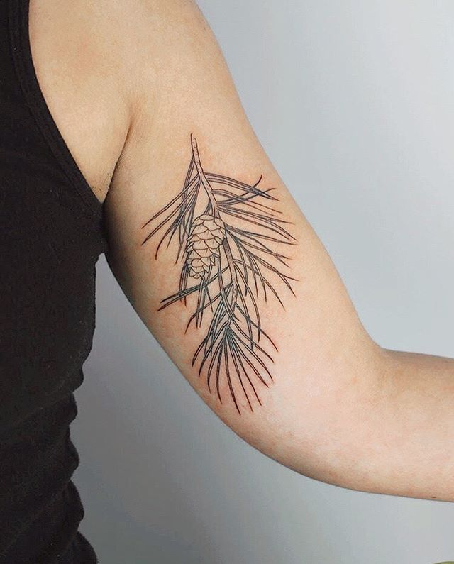 pine pal by @evanpaulenglish 🌲💚