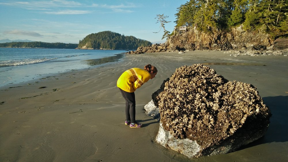 Lyndsay searches for life on the beach near Ucluelet, Vancouver Island, British Columbia.