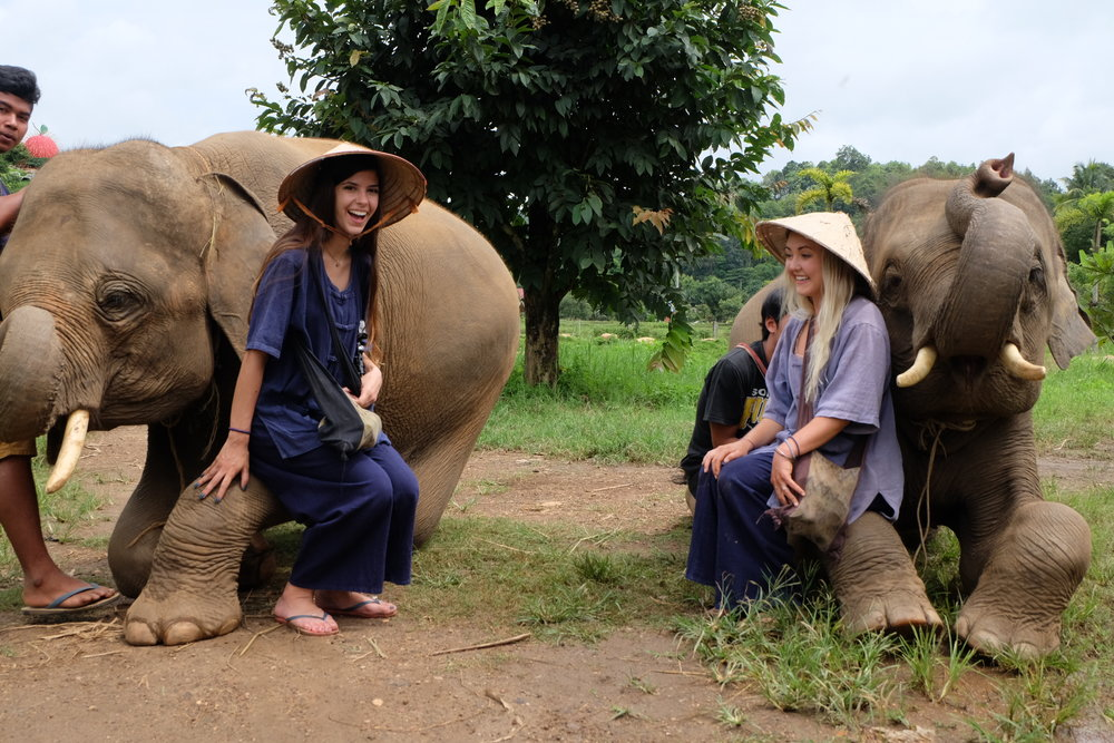 Playing with Elephants in Thailand was the GREATEST experience of my life.