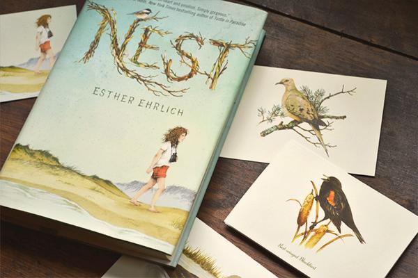 Nest4.jpg