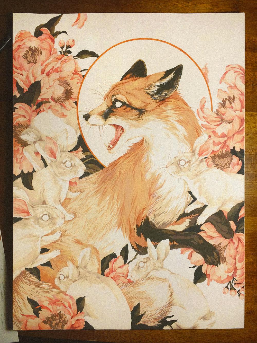 fox9.jpg