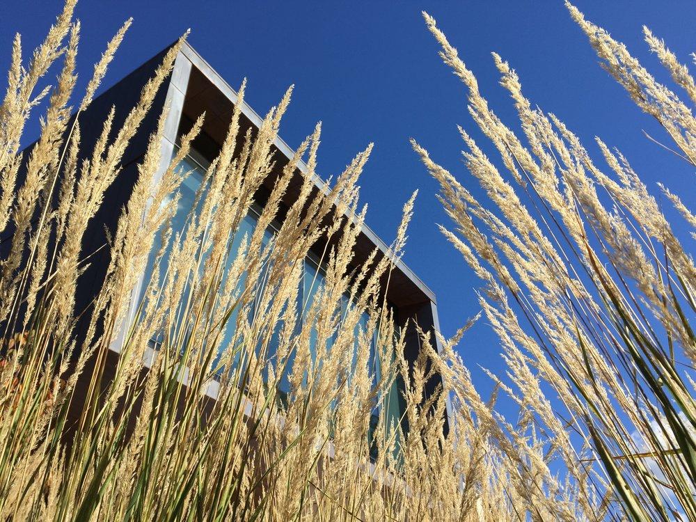 Casa Retiro das Pedras——————————————————Estudos bioclimáticos para conforto térmico -
