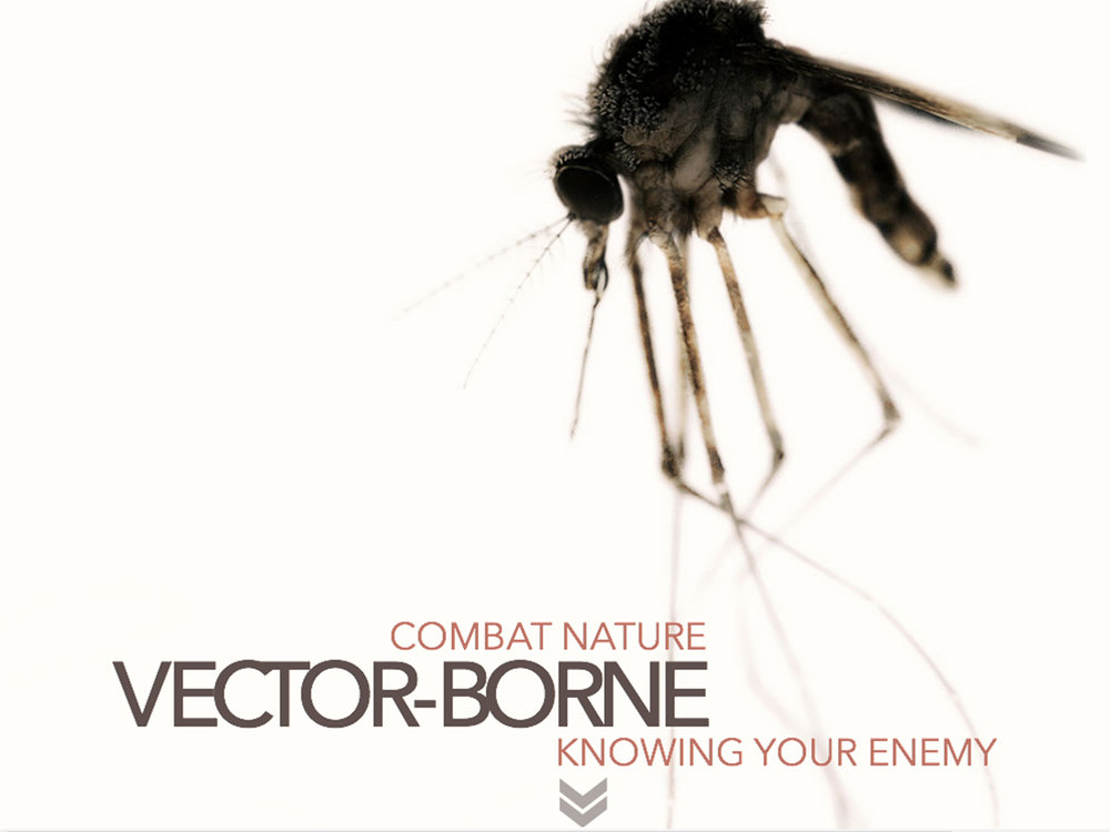 Vector-Borne_Thumb.jpg