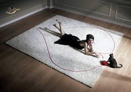 Sheba Advert (2008)