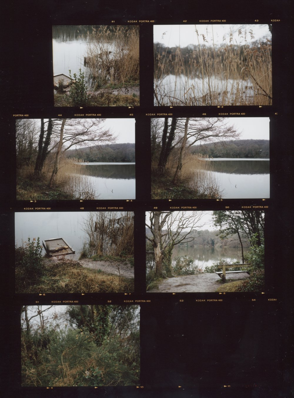 Contact Sheet #3, Anthony Prothero, 2018