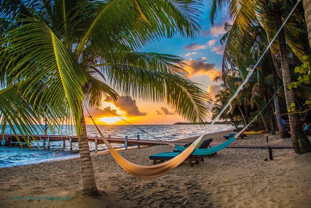 Sunrise and hammock (1).jpeg