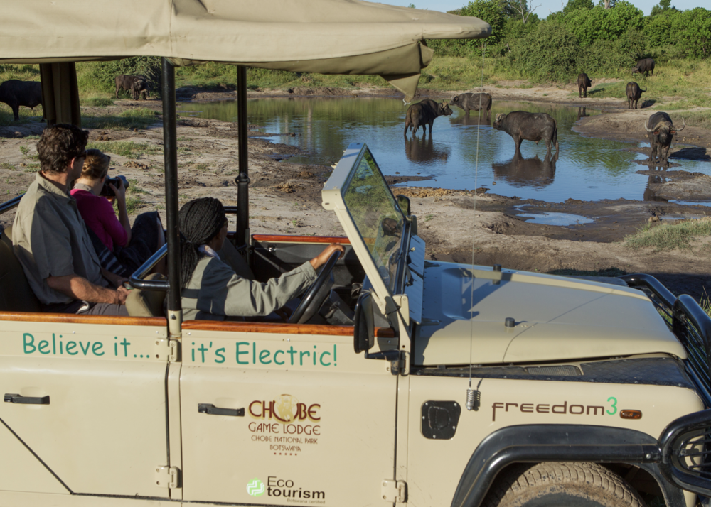 Photo from Chobe Game Lodge