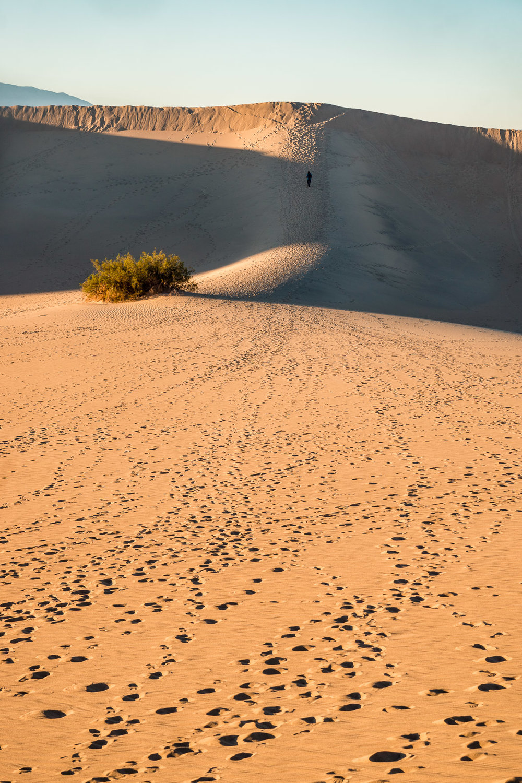 4_Death-Valley-dunes-landscape_Joseph-Barber-Studios.jpg