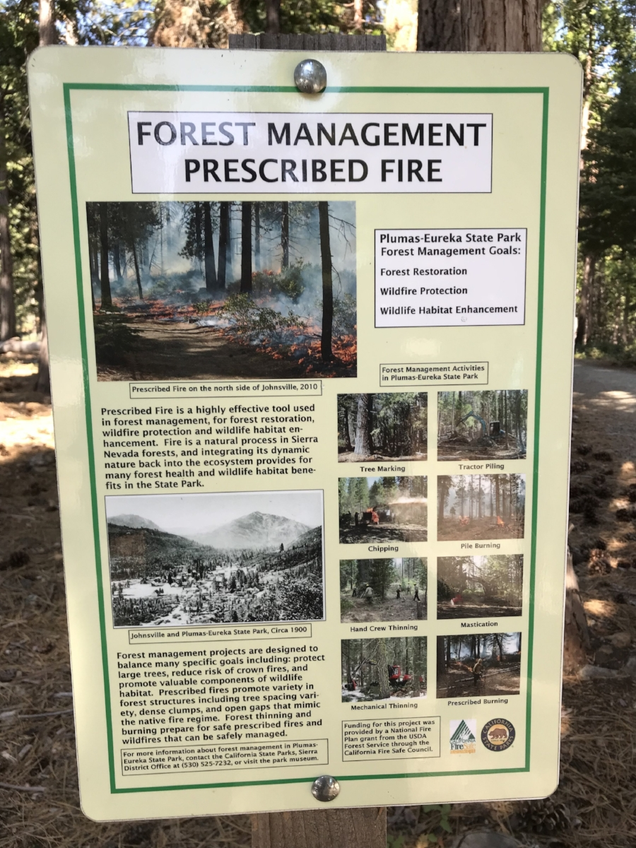An informational sign about forest management and prescribed burns in the Plumas-Eureka State Park. Photo by Lorin Letendre