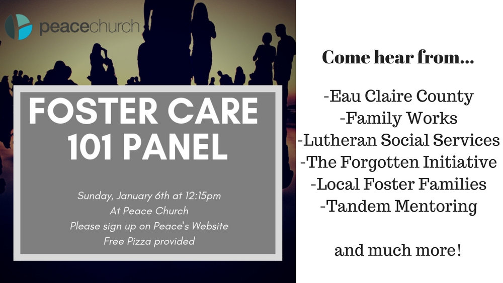 Foster Care 101 Panel Slide.jpg