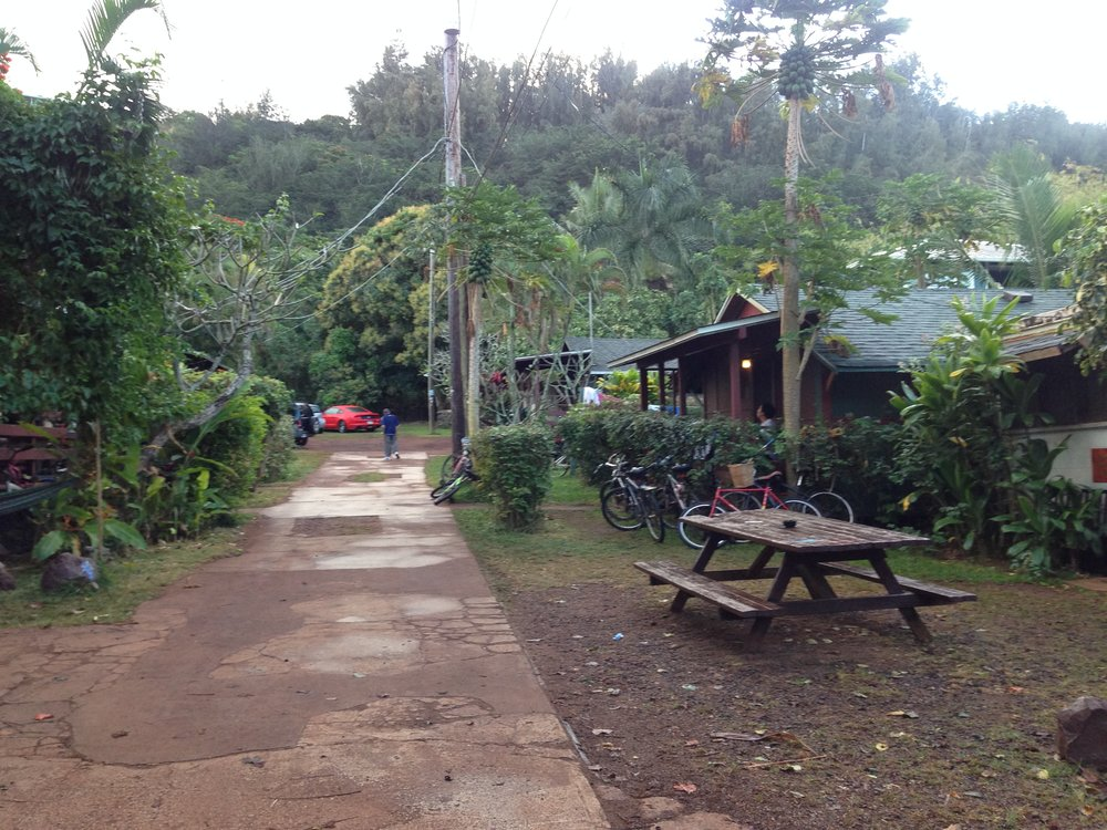 Backpackers Hawaii on the North Shore in Oahu was the opposite of a party hostel