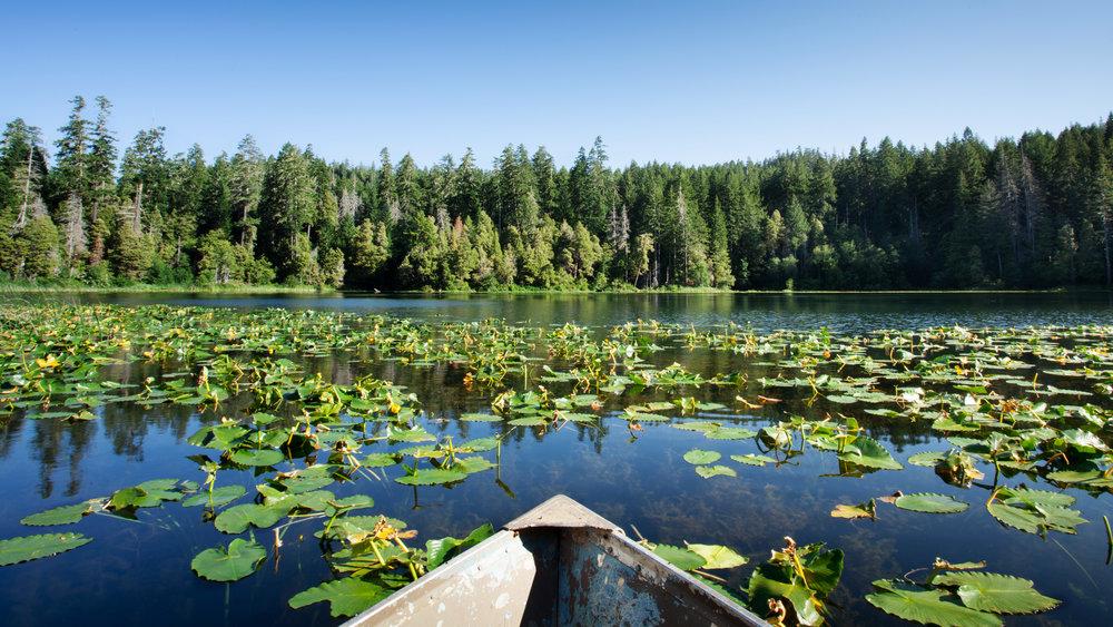 Fish Lake, California