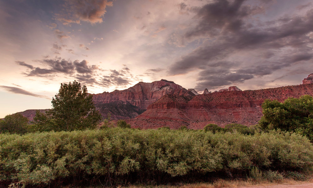 Red Cliffs at Zion National Park