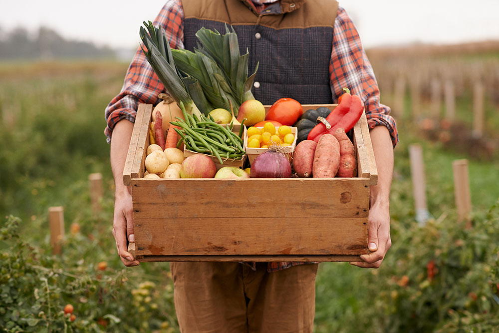 Farmer with box of garden vegetables Easy Gluten-Free Cooking