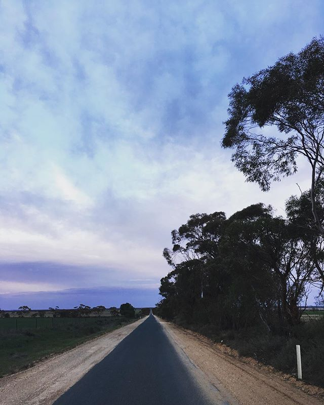 H A P P Y • F R I D A Y ✨  Fingers crossed for a shower of rain today 🌧 #agriculture #aussieag #friyay #mallee #overcast #agronomy #rural #landscape #photography