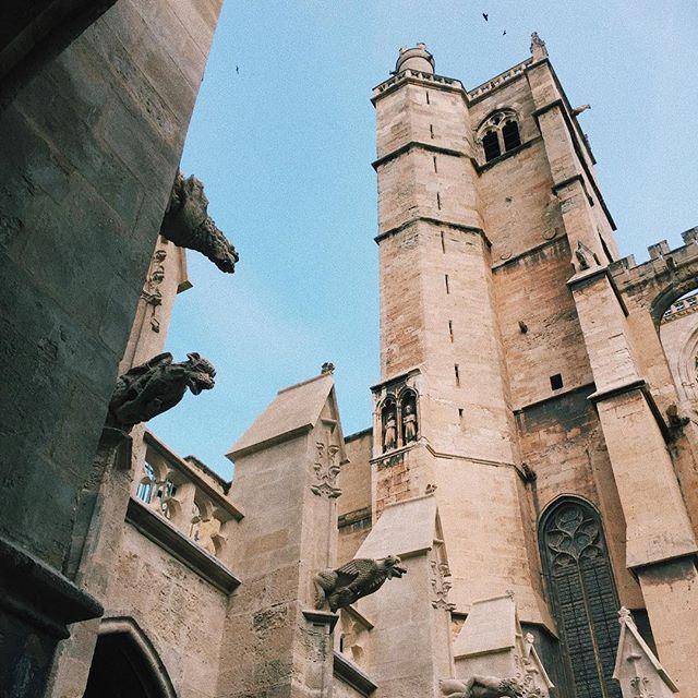 Exploring Narbonne