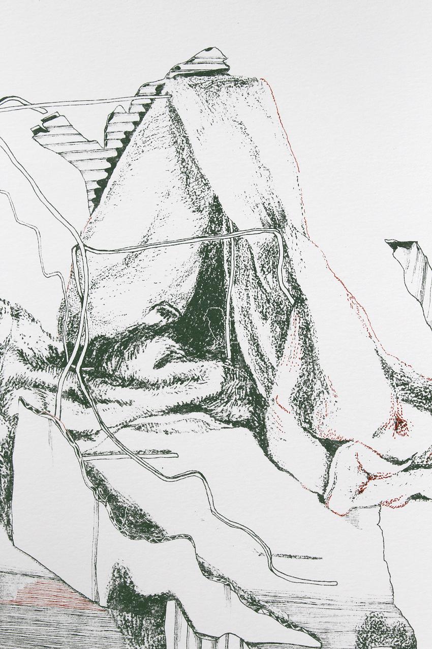 Kea – detail